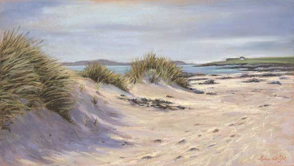 Beach dunes on the Isle on Ioan