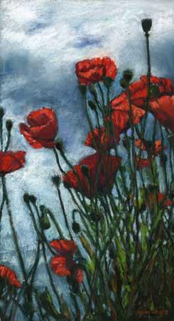 Kingsbarns Poppies, Pastel