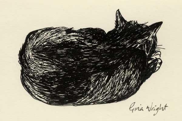 Sleeping Cat One, Ink Sketch