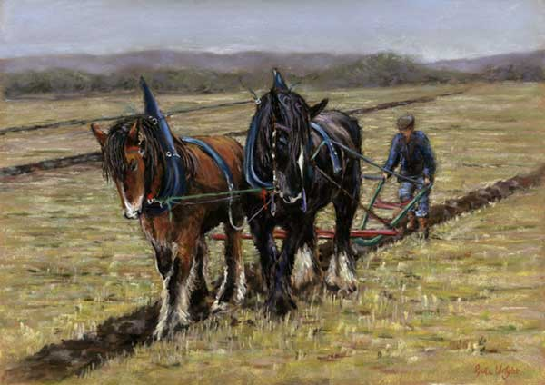 The Ploughing